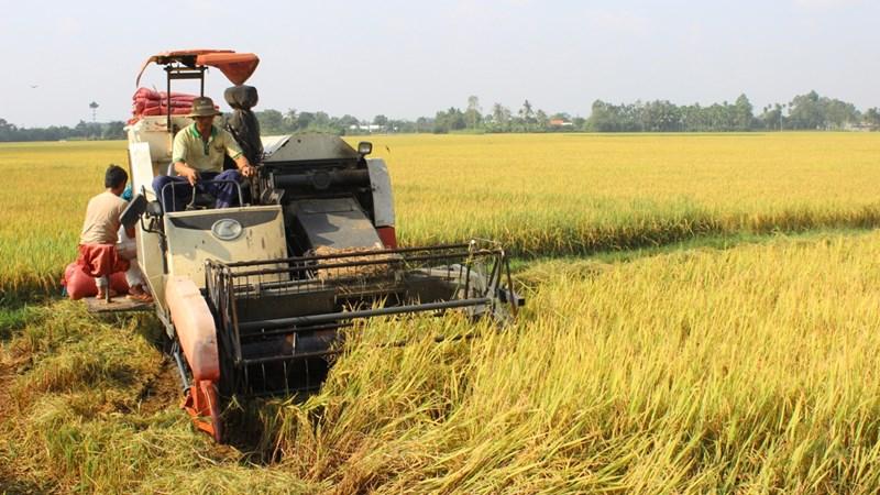 Nông nghiệp Hà Nam: Ghi nhận những kết quả tích cực