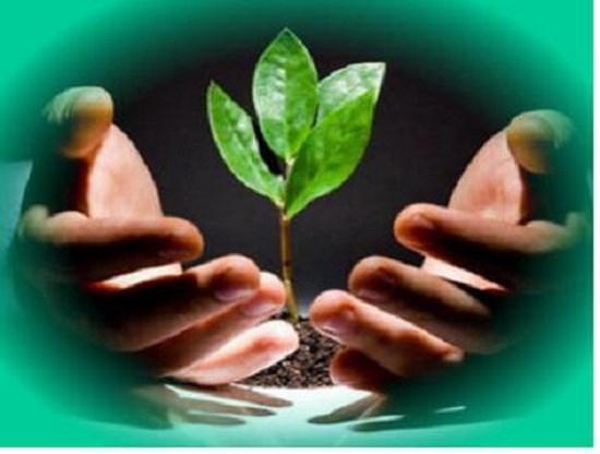 Mối quan hệ giữa chỉ số phát triển con người và giải quyết các vấn đề xã hội