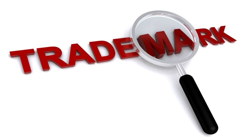Hoàn thiện pháp luật về góp vốn bằng nhãn hiệu hàng hóa tại Việt Nam