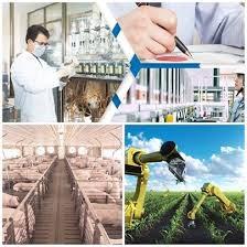 Hoạt động thúc đẩy năng suất chất lượng triển khai mạnh mẽ tại địa phương
