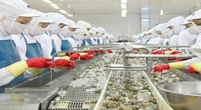 Cần chủ động mở rộng thị trường xuất khẩu tôm
