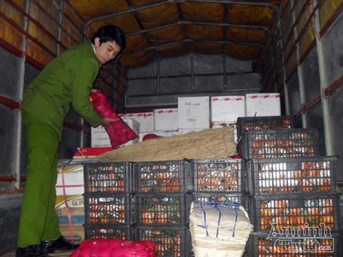 Bắt giữ gần 2 tấn hoa quả Trung Quốc nhập lậu