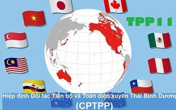 Việt Nam đón đầu cơ hội trước Hiệp định CPTPP
