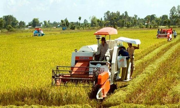 Mở rộng bảo hiểm, hoá giải rủi ro nông nghiệp