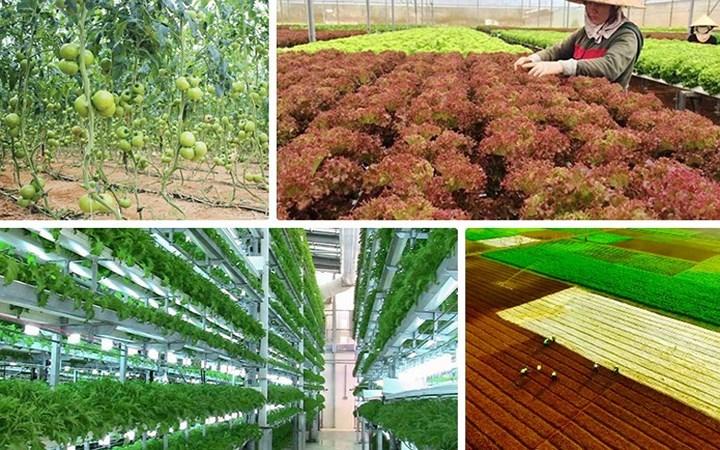Các giải pháp công nghệ nông nghiệp tốt nhất sẽ có mặt tại Hội nghị Thượng đỉnh GMF lần thứ 6