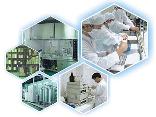 Văn phòng đại diện công ty dược được thực hiện hoạt động gì?