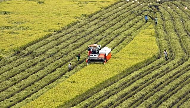 Xu thế đưa khoa học công nghệ vào nông nghiệp