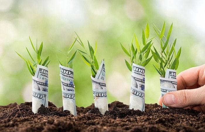 Làm gì để tiền bạc năm mới dư dả hơn?