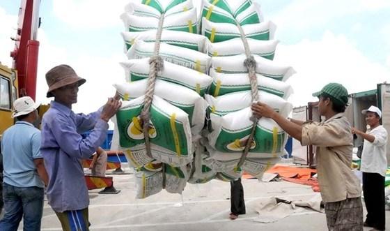 Công bố kết quả kiểm tra việc mua gạo dự trữ quốc gia 4 tháng đầu năm 2020