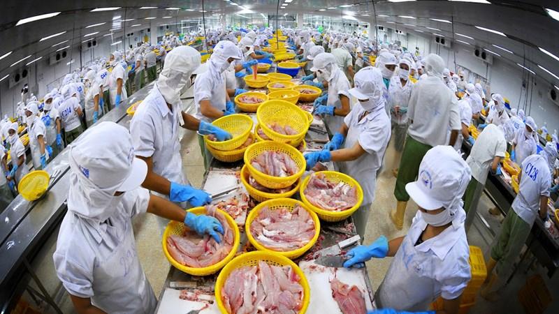 Kim ngạch xuất khẩu thủy sản giảm, lo khó đạt mục tiêu 10 tỷ USD cả năm
