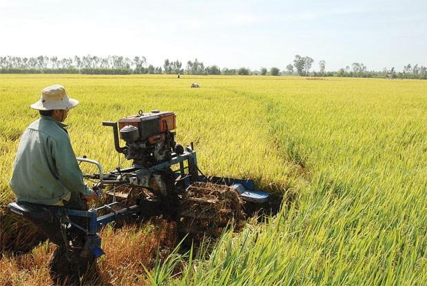 Thêm ưu đãi bảo hiểm nông nghiệp cho nông dân