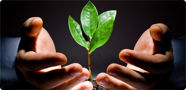 Giải pháp thúc đẩy ngành Quản lý quỹ phát triển trong năm 2013 (*)