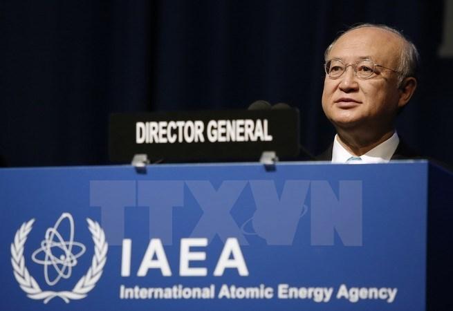 IAEA sẽ giúp Việt Nam trong lĩnh vực điện hạt nhân