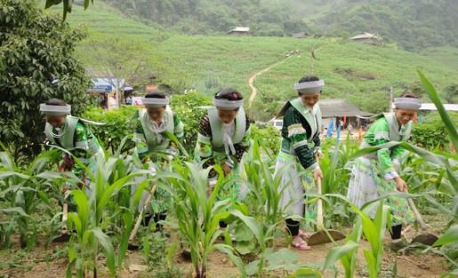 Giảm nghèo phải đi vào thực chất hơn nhằm góp phần phát triển đất nước