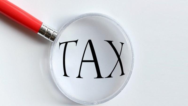 Bộ Tài chính thông tin về mức thuế suất đối với mặt hàng trứng Artemia