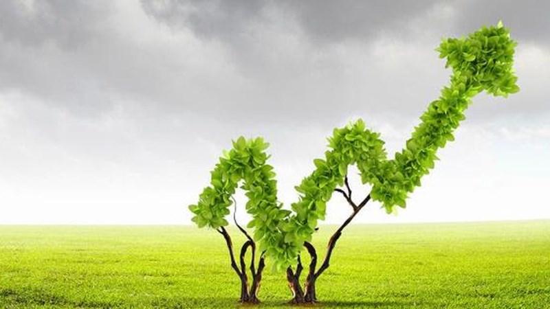 Phân bổ 61 tỷ đồng để ứng phó với biến đổi khí hậu và tăng trưởng xanh