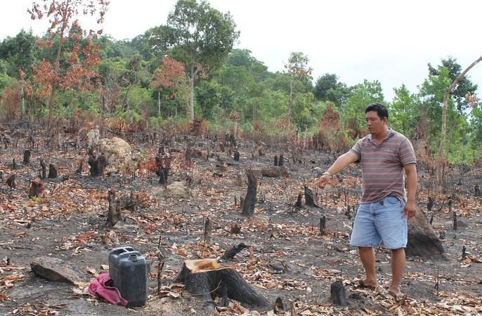 Xử lý hình sự các đối tượng lấn chiếm đất công chuyển nhượng trái phép tại Phú Quốc