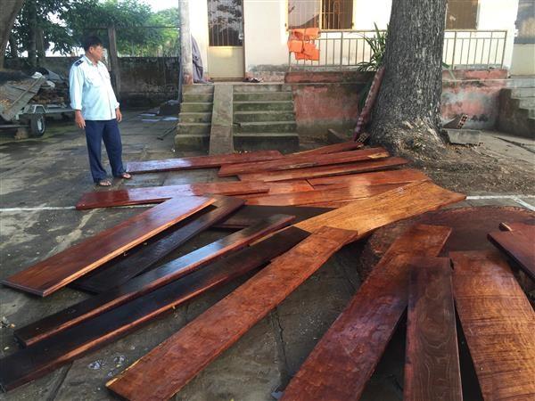 Đội Kiểm soát Hải quan Đồng Tháp bắt giữ gỗ nhập lậu