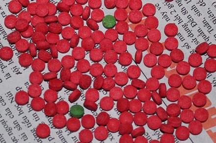 Hải quan Hà Tĩnh phối hợp bắt gần 600 viên ma túy tổng hợp