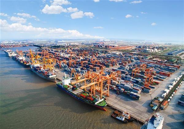 Đề nghị hãng tàu xử lý vướng mắc trong phối hợp giám sát
