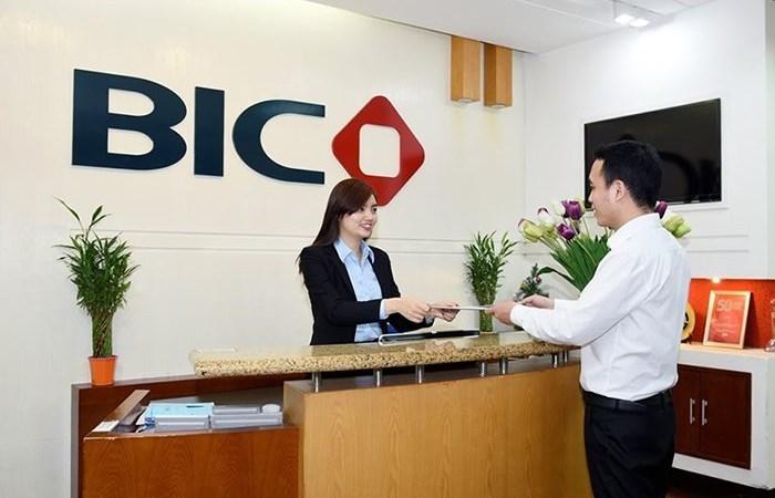 Ai sẽ đại diện 40% vốn góp của BIDV tại BIC?