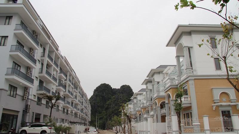 Sức nóng bất động sản Quảng Ninh đang dẫn đầu các tỉnh phía Bắc