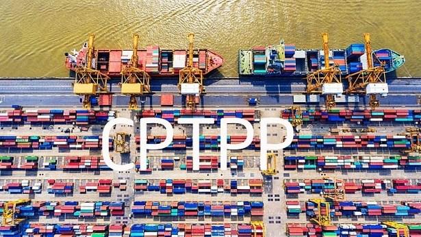 519 dòng thuế xuất khẩu, 10.647 dòng thuế nhập khẩu ưu đãi đặc biệt thực hiện CPTPP