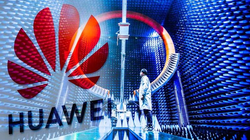 """Huawei ráo riết tuyển hàng trăm kỹ sư công nghệ tại châu Âu để """"đấu"""" với Mỹ?"""