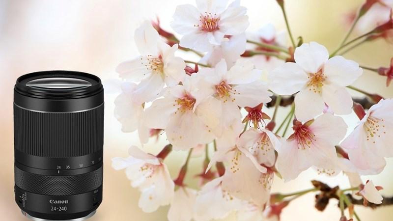 Trải nghiệm với ống kính mới RF24-240mm f/4-6.3 IS USM của Canon
