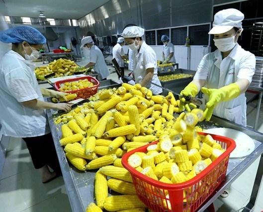 Đâu là át chủ bài cho nông sản Việt?