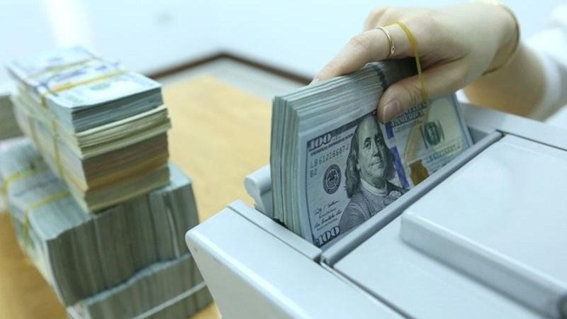 Tỷ giá Việt Nam: Dự báo bức tranh cuối năm 2021 và năm 2022