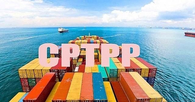 Xác định xuất xứ hàng hóa hưởng thuế suất ưu đãi đặc biệt theo Hiệp định CPTPP