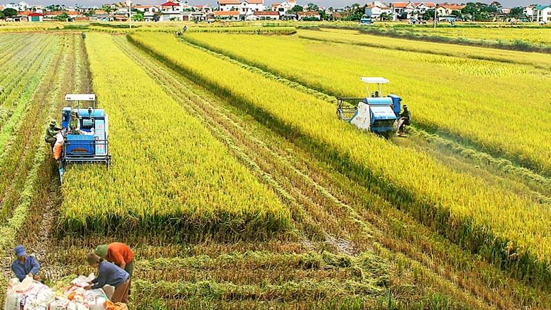 Nhiều chính sách ưu đãi về thuế, phí hỗ trợ sản xuất nông nghiệp