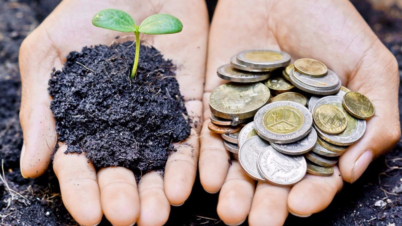 Trách nhiệm xã hội của một số tập đoàn kinh tế Nhật Bản và gợi mở cho doanh nghiệp Việt Nam