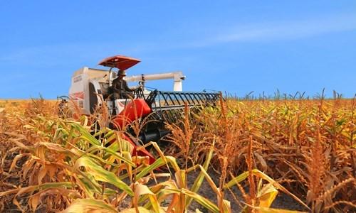 Tiếp tục phát huy nội lực ngành Nông nghiệp trong năm mới