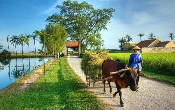 Quá trình công nghiệp hóa, hiện đại hóa nông nghiệp, nông thôn ở Việt Nam