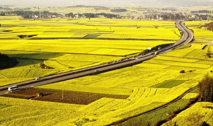 Phát triển thị trường quyền sử dụng đất nông nghiệp