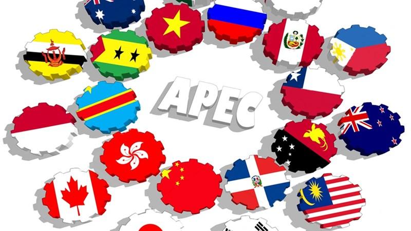 Kim ngạch xuất nhập khẩu Việt Nam – APEC đạt hơn 265 tỷ USD