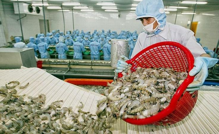 Tìm lời giải cho bài toán 8,5 tỷ USD xuất khẩu thủy sản 2018