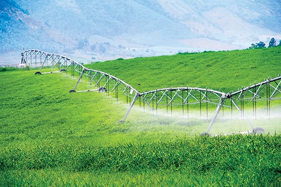 Công nghệ cao đang đi vào nông nghiệp