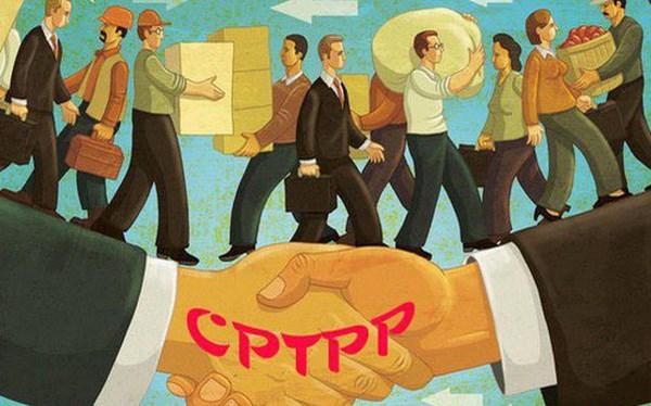 CPTPP thông qua, giá nhiều cổ phiếu tăng mạnh
