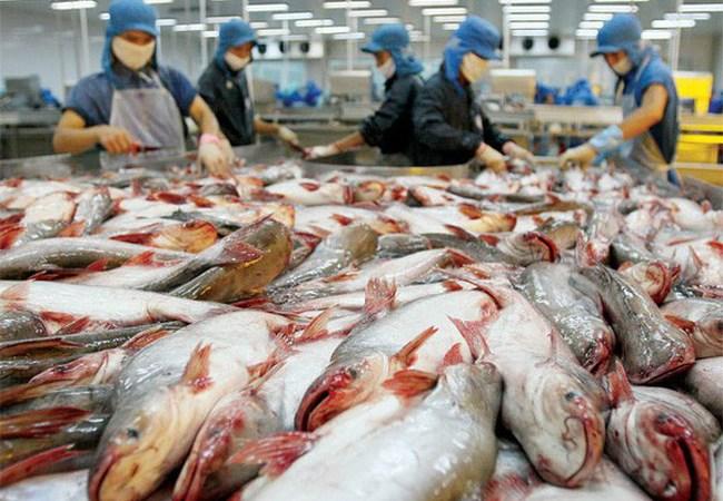 Thượng nghị sĩ Mỹ lên tiếng về việc DOC đánh thuế cá da trơn Việt Nam