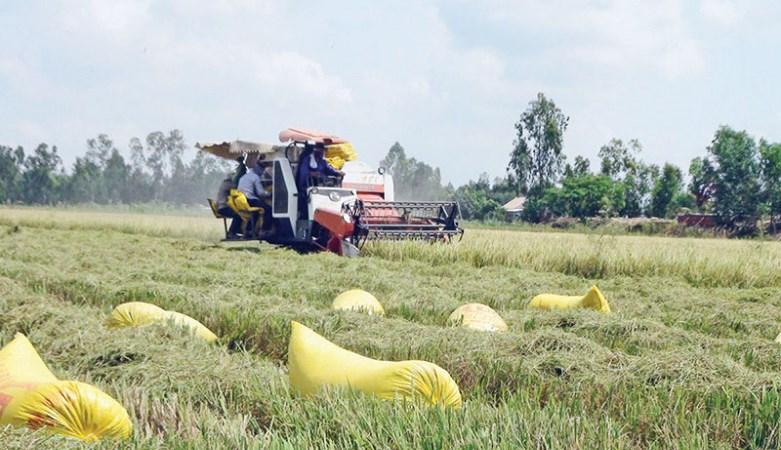 Nông nghiệp giá rẻ đã hết thời