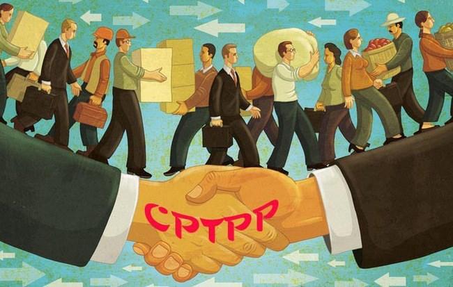 Lưu ý doanh nghiệp về cam kết trong Hiệp định CPTPP