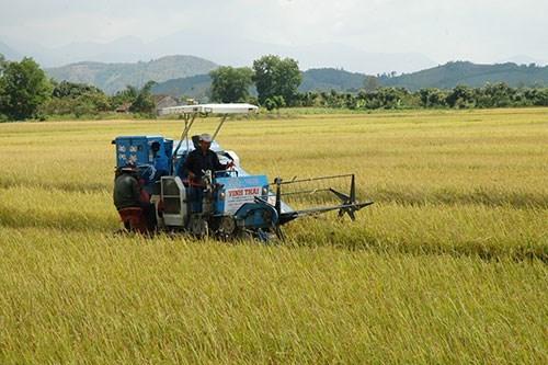 Tiếp sức cho doanh nghiệp về nông thôn