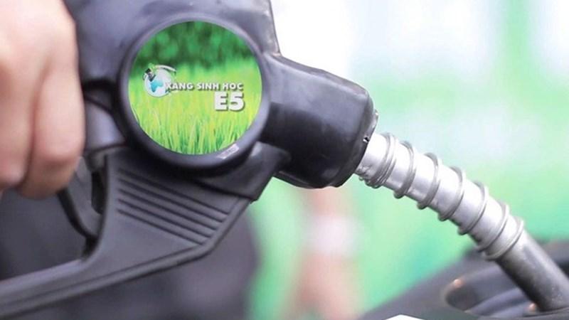 Bộ Tài chính đề xuất hoàn thuế tiêu thụ đặc biệt đối với xăng sinh học
