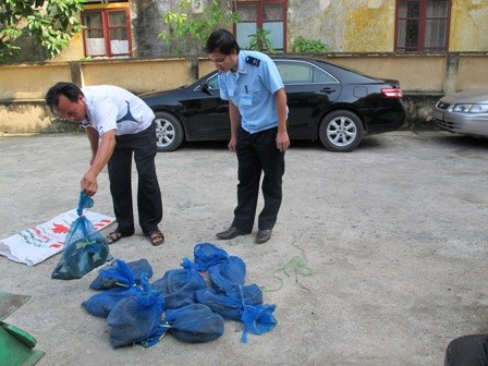 Hải quan Hà Tĩnh: Thu giữ hơn 10 kg kỳ đà sống
