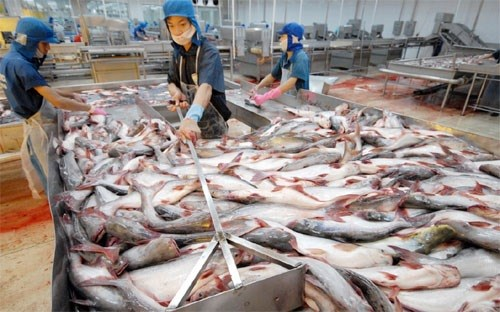 Mỹ tăng thuế chống bán phá giá cá tra