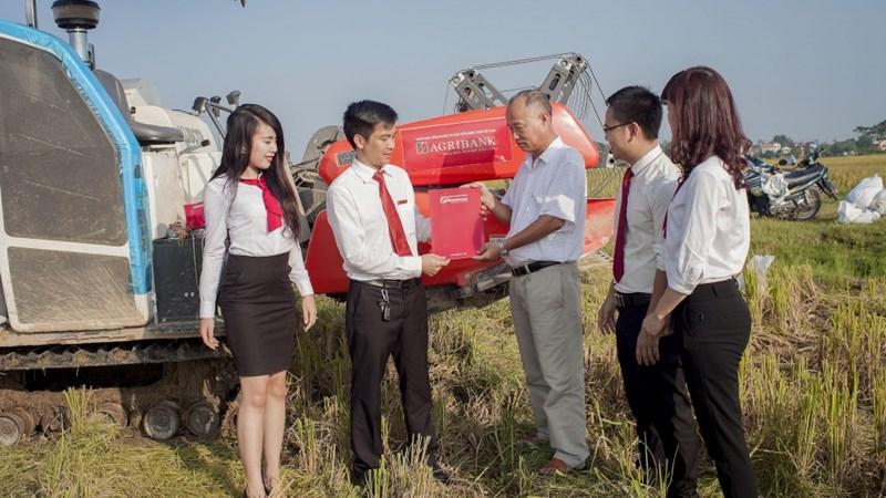 Góp sức đưa nông sản Việt vươn ra thế giới
