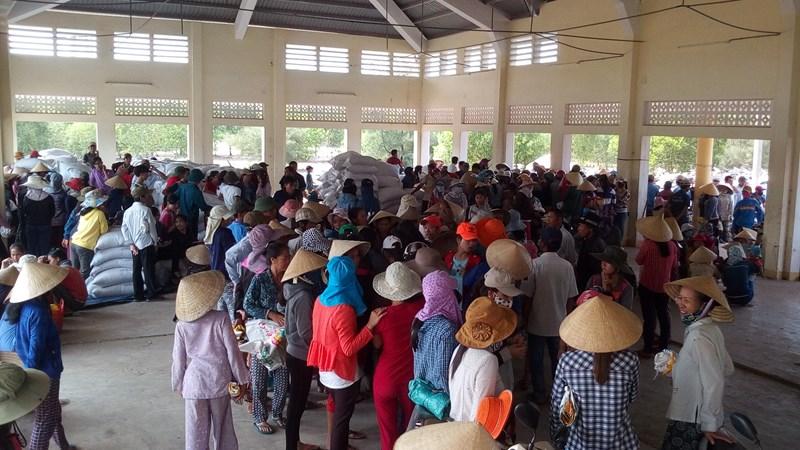 Xuất cấp gạo Dự trữ Quốc gia cho người dân bị ảnh hưởng do cá chết bất thường